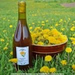 Dandelion Wine Recipe from Common Sense Home