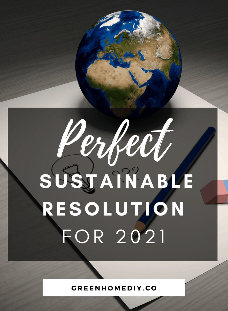 Pick a sustainable resolution this year